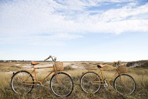 bicycles on the dunes of cape cod