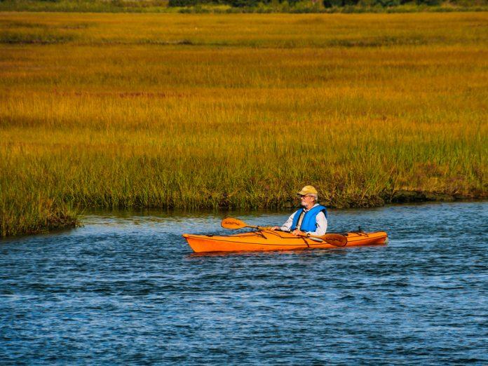 Kayaker Cape Cod Scorton Creek
